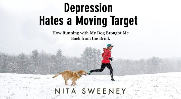 Photo of book cover jacket Depression Hates a Moving Target by Nita Sweeney.